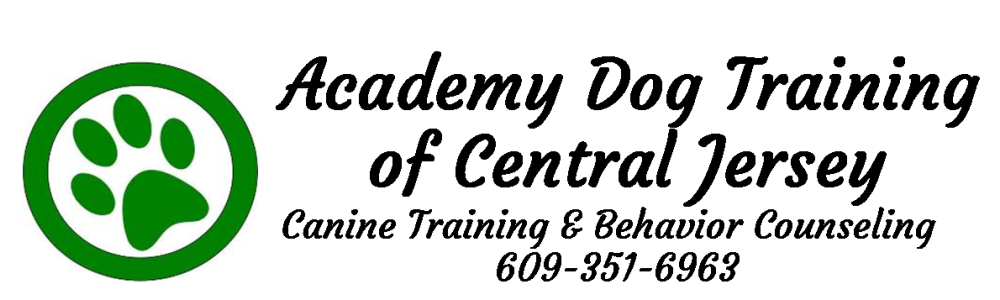 Academy Dog Training of Central Jersy Logo & Company Name