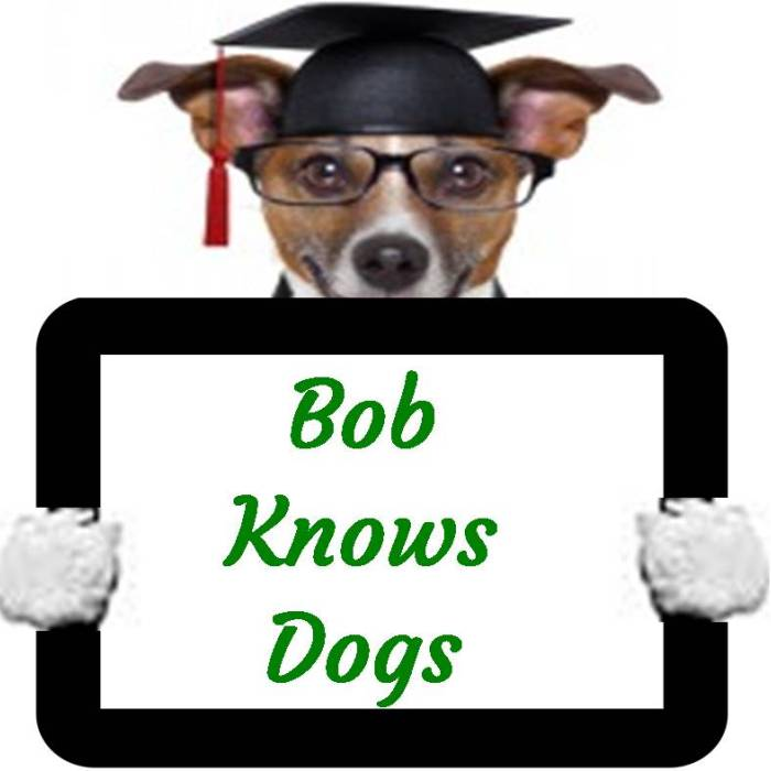 Bob knows dogs and why they do what they do